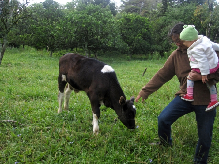 Visiting the local farm with Amaya. Image courtesy of the author